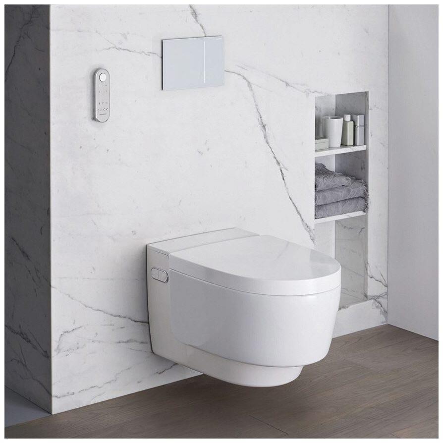 roth die handwerksmeister news wohlbefinden und gesundheit durch ein dusch wc. Black Bedroom Furniture Sets. Home Design Ideas